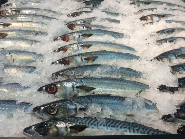 Wie bereite ich Fisch zu?